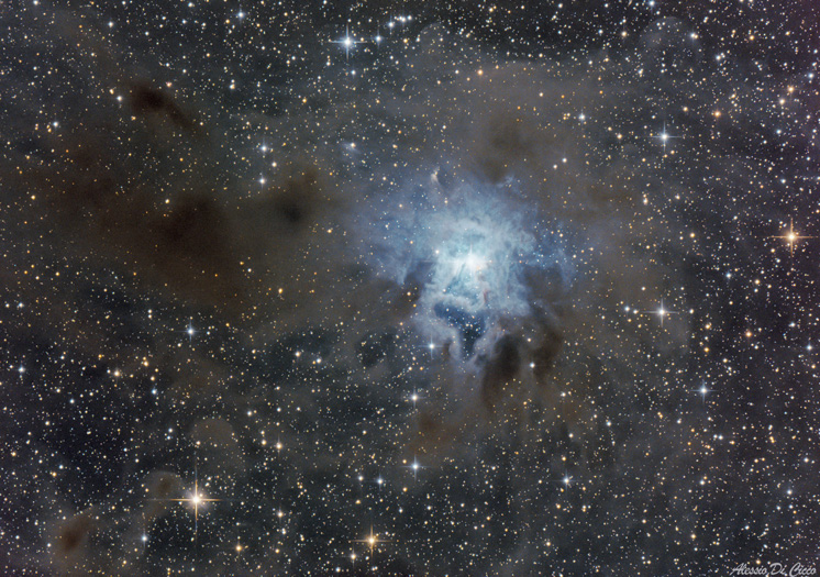 astrofotografia astrofarm alessio di cicco iris nebula
